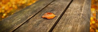 fall header