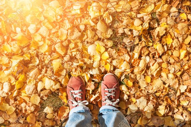 Feet standing on fallen autumn leaves