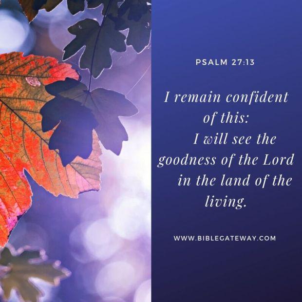 Psalm 27_13