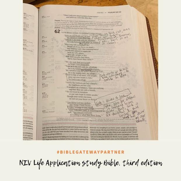 NIV Life Application study Bible, third edition-3