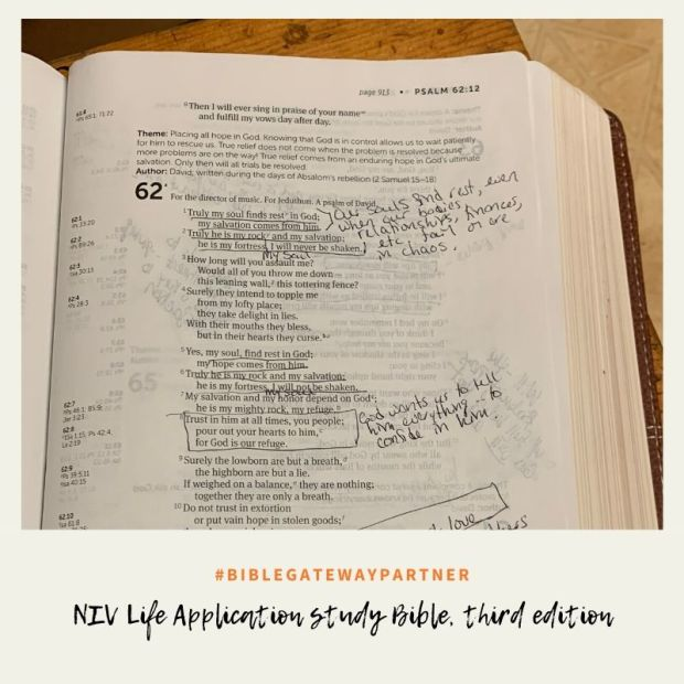 NIV Life Application study Bible, third edition-4