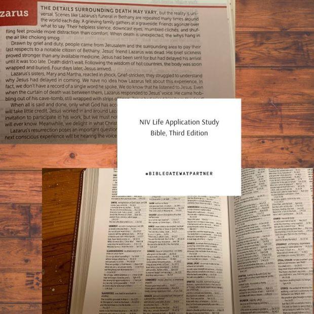 NIV Life Application study Bible, third edition-6