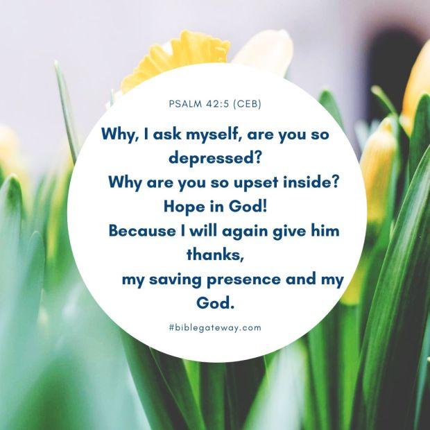 Psalm 42_5 (CEB)